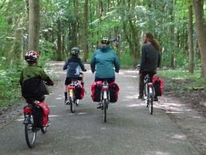 Cyclists Forest Fietsers Radfahrer Bos Wald