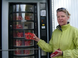 Strawberry Aardbeien Erdbeere Francien van der Lee